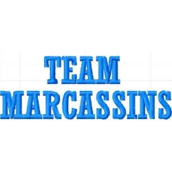 Appliqué, patch TEAM MARCASSINS