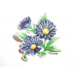 Calendula bleu (fleur, flower)