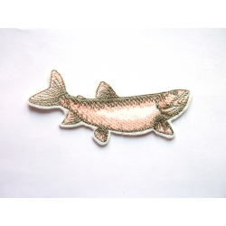 Patch thermocollant truite saumonée (poisson)